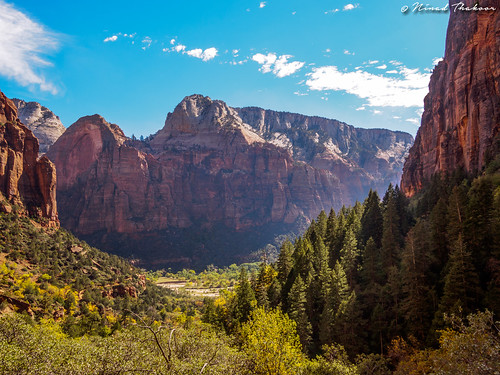 """Zion landscapes • <a style=""""font-size:0.8em;"""" href=""""http://www.flickr.com/photos/59465790@N04/15094943413/"""" target=""""_blank"""">View on Flickr</a>"""
