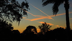 Sunset jet trails (Jim Mullhaupt) Tags: pink blue sunset red wallpaper orange sun color tree weather silhouette yellow landscape evening nikon flickr sundown florida dusk palm tropical coolpix contrails bradenton jettrails p510 mullhaupt jimmullhaupt