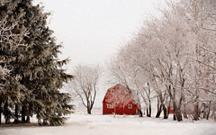 red on white (anniedaisybaby) Tags: winter barn rural frost farm manitoba redbarn interlake topazimpressions noothertexture