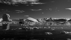Penola Strait, Antarctica (x_tan) Tags: antarctica glacier iceberg penolastrait canonef28300mmf3556lisusm canoneos5dmarkiii