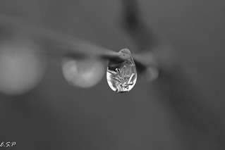 Ice Droplet