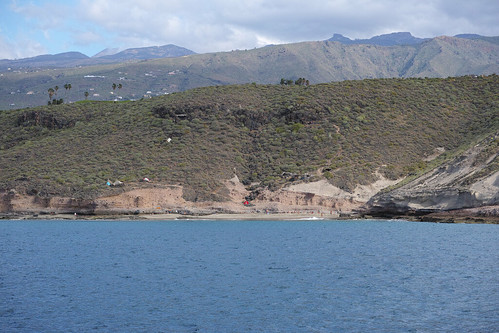 Whale watching mit dem Katamaran_SDIM1877