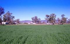 62 Warrah Creek Rd,