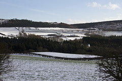 14 January 2015, - Pinchinthorpe, Newton under Roseberry, and Airyholme Farm (The Grey Panther) Tags: northyorkshire greypanthers roseberrytopping pinchinthorpe newtonunderroseberry thegreypanthers railwaywalkway airyholmefarm pinchinthorpecountrypark