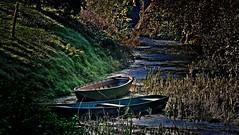 Barche (66Colpi) Tags: verde ticino riva blu fiume barche acqua azzurro lombardia navigli canne tornavento oleggio canneto sponda parcodelticino fiumeazzurro pontedioleggio lonatepozzolo expo2015 barcè viagaggio vivaviagaggio