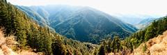 Green Valley | Shimla, India (Shankha Suvra) Tags: panorama india mountains station shimla nikon hill peaks himalaya himachal hillstation pradesh himachalpradesh d3000
