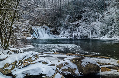 Icy Abrams Falls (Ron Harbin Photography) Tags: park mountains ice beautiful frozen waterfall scenery cove gorgeous great falls national smoky icy abrams cades gsmnp saariysqualitypictures