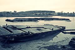 Ancien ponton ostricole (Marc Le Port) Tags: blackandwhite boat blackwhite noiretblanc pentax sigma bretagne bateaux nb wreck morbihan wrecks k3 noireetblanc paves golfedumorbihan lebono marcleport