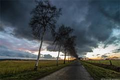 _cloudy (l--o-o--kin thru) Tags: märz zwillbrock 2015 ubenkede wolkenrot
