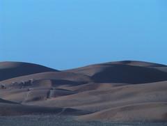 Vast Expanse of Sand Dunes Sahara Desert