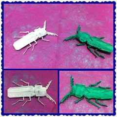 Origami Euthysanius (Axl Chuvie Teofilus) Tags: origami awesome beetle complex waxpaper tissuefoil squarepaper euthysanius