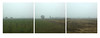 #7982 (UBU ♛) Tags: blues blupolvere unamusicaintesta landscapeinblues bluubu luciombreepiccolicristalli ©ubu