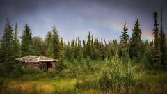 After the storm (frostnip907) Tags: rainbow cabin decay abandoned rural alaska wilderness storm rain