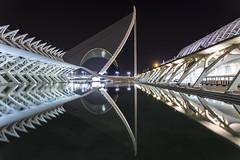 Night Reflections (Danieldevad) Tags: building architecture reflection water calatrava museum bridge symmetry creative artistic night creativo artistico edificio arquitectura reflejo simetria noche museo puente agua