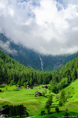Trentino2016fb-7284 (Sdelmo74) Tags: montagna trentino cascate sanbernardo valdirabbi valorz