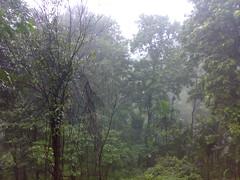 27072008370 (Gokul Chakrapani) Tags: waterfalls karnataka westernghats bolle charmadi