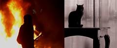 """""""su corazón destruido y duradero aún enciende llamas"""" (Felipe Smides) Tags: libertad emma muerte protesta vida resistencia fuego riots barricada barricadas smides felipesmides"""