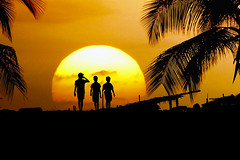 Little Gangsters ;) (Ragavendran / Rags) Tags: ragavendran cwc chennaiweekendclickers silhouette gang gangsters walk walking sun sunrise big orange golden trees coconut ecr kids boys children magical composite combined montage nikon d7000 tamilnadu