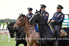 Police horses at Belmont Park (Rock and Racehorses) Tags: horses ny belmont police elmont policehorses webpolicehorsesska6478sarahandrew