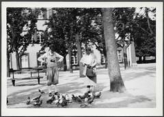 Archiv G349 Taubenftterung, Basel am 7. August 1932 (Hans-Michael Tappen) Tags: 1932 1930s outfit basel taube tier kleidung knickerbocker tauben tierfoto sitzbank handtasche tierliebe tierfreunde 1930er taubenfoto tierfreund stadtfoto archivhansmichaeltappen