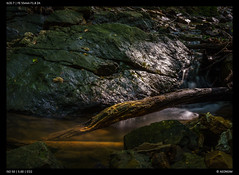 Stream (Falcdragon) Tags: sonya7alpha ilce7 forest woods forests stream water long exposure rock light smoothreflections sony sonyzeisssonnarfe1855mmza