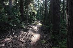 Peaceful (rozoneill) Tags: maiden peak trail waldo lake pacific crest oregon hiking willamette pass gold skyline odell butte volcano forest eugene