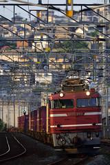 DSC4353 (nEUROn FL) Tags: railway train freighttrain fukuoka kokura kyushu ef81
