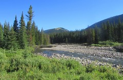 Love the Small Streams (kdlinab) Tags: alberta creek small trout flyfishing