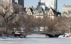 Bow Bridge and Dakota Building (claugrodriguez) Tags: centralpark newyork newyorkcity unitedstates winter bowbridge bridge landscapephotography urbanphotography