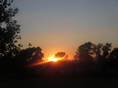 Ruskin Park sunset (John Steedman) Tags: london uk unitedkingdom england   greatbritain grandebretagne grossbritannien       ruskinpark camberwell se5 sunset sonnenuntergang coucherdesoleil puestadelsolr