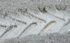 Earthmoving (mag3737) Tags: flickrbingo flickrbingo4 flickrbingo4b9 earthmoving tracks treads goldenratio goldenrectangle