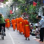 131. Laos. Luang Prabang. Cérémonie des offrandes aux moines, au lever du jour thumbnail