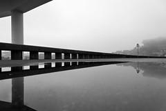 Porto - Portugal (Francisco (PortoPortugal)) Tags: 1762016 20121009fol7766se freixo pontedofreixo pb bw gua water nevoeiro mist bridge porto portugal portografiaassociaofotogrficadoporto franciscooliveira