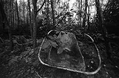 08 (rtw1r) Tags: rtwlr urbanexploration urbex  russia abandoned ruins decay carousel abandonedcarousel childrens camp darkness darkplace dark analogphotography filmphotography film 35mm blackandwhite bw tasma d76