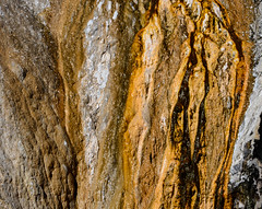 _DSC8168 (DianeBerky19) Tags: nikondf wy jacksonholewyoming yellowstonenationalpark springs