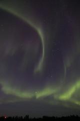 August aurora borealis (Chalicerae) Tags: aurora auroraborealis northernlights thompson manitoba nightsky spaceweather canon60d tokina1116mm