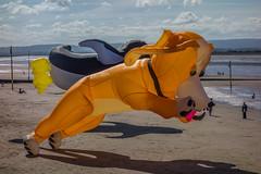 Burnham Kite Fair (andymulhearn) Tags: sonyphotographing sony dscrx100 rx100