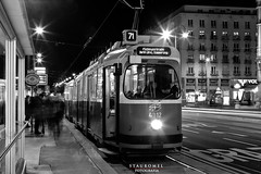 Tranvía de Medianoche (Stauromel) Tags: viena austria noctuna bn blancoynegro blackwhite tram train tranvia stauromel street medianoche lights alquimiadigital canon1dmarkii melilla