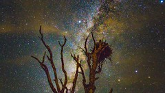 The Nest and the stars (The Happy Traveller) Tags: beautifullandscapes nightscenery nationalparks nightphotography nightshot nightsky starrysky stars astrophotography milkyway milkywaygalaxy