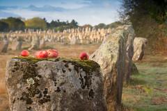 stone-apple (fbesrest) Tags: carnac pomme nikonflicrkaward
