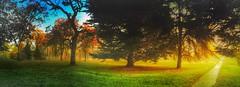 Autumn series (Nick Kenrick.) Tags: panorama trees path