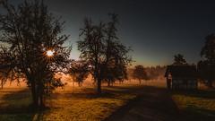 Husle.... (Sascha Wolf) Tags: htte morgen sonnenaufgang nebel herbst blendenstern outdoor natur bume