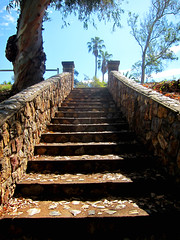 Ascend (TheJudge310) Tags: fullerton california usa stairs steps up stone trees park