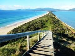 Bruny island lookout - Tasmania - Australia (pacoalfonso) Tags: pacoalfonsocom travel australia tasmania neck nature lookout bruny island beach