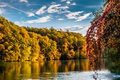 Automne (marisollois) Tags: rhne genve suisse automne otoo couleurs paysage nuages octobre fall rouge
