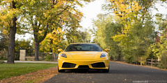 RR430_11Oct2015_04_01 (ronnierenaldi.com) Tags: rr430 ferrari f430 ronnierenaldi modified modded car cars exotic exotics auto automotive photography photoshoot yellow supercar prancing horse scud 430 giallo modena adv1 wheels adv1wheels ferrari430 ferrarif430 yellowferrari denverferrari scuderia ferrariscuderia exoticcar
