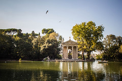 Rome (Alex Ripoche) Tags: rome roma parc park oiseaux birds lac lakes colors couleur italie italy travel flickrtravelaward europe ciel arbre abigfave anawesomeshot canon landscape paysage water reflection reflet mywinners sky voyage city lumire light view winner simplysuperb contrast love moment memories souvenir