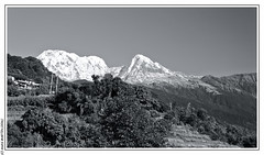 Annapurna South and Hiunchuli from Lwang (L'Abominable Homme de Rires) Tags: nepal tamron 2470mmf28 canon 5dmkiii nb noiretblanc blackwhite landscape himalaya mardihimalbasecamp huwans clubaventure trekdumardihimal mardihimaltrek travel trekking mountain fishtail acap eos5dmarkiii