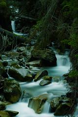 tirol3 (fkorsen) Tags: fkorsen fynn korsen nikon tirol sterreich bach fluss gebirge alpen gebirgsfluss wald steine gestein natur wasser austria stream alps water stones forest neustift stubaital