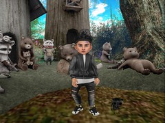 Racoons & Bears! :o (Zaidon Resident) Tags: flite yuth littlemiss theepiphany foreign ionic bomber jacket fashion toddleedoo secondlife virtural reality vibes chill village nature landscape boys blogging blogger photography photographer photo photooftheday photograpy pictures people pc pose poses posies dollface dope designer kitty foxes gaming gamer gacha